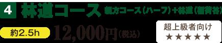 林道コース 親方コース(ハーフ)+林道(稲荷谷)